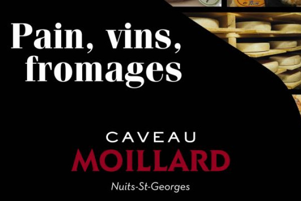 Dégustation Pain Vins Fromages en Bourgogne