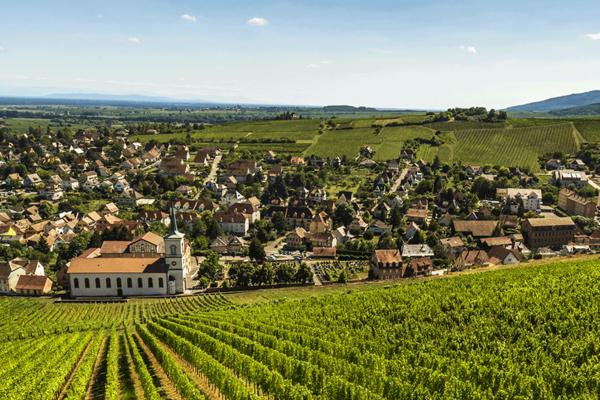 Trois stops pour découvrir les vins d'Alsace à moins de 100km de Strasbourg