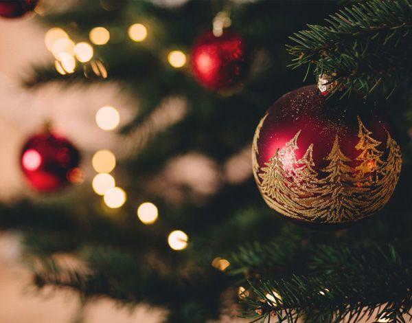 Découverte des saveurs de Noël