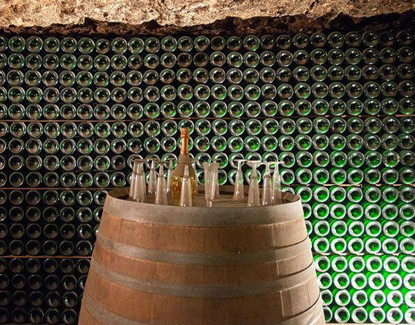 Découverte des vins de Loire