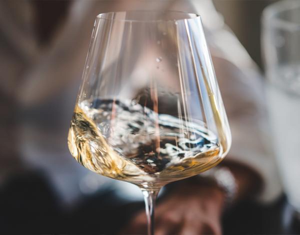 Dégustation de Chardonnay et de Rosés