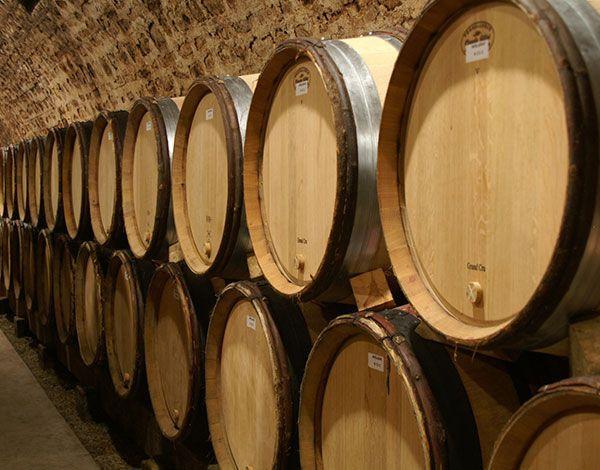 La Bourgogne : terre de climats