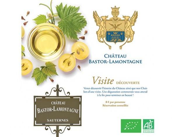 Visite & Dégustation au Château