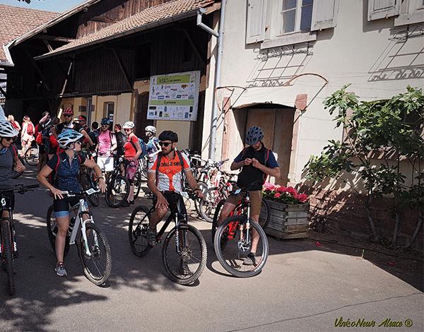 Vélo Vino Tour